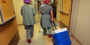 nurses and doctors in scrubs wheeling a cooler
