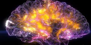 brain electron neurons