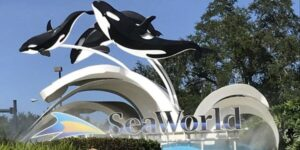 seaworld entrance sign with orcas