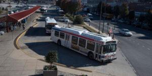 bus bus loop